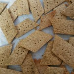 Passover Almond Crackers