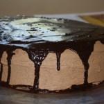 Triple Chocolate Chocolate Cake